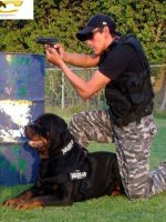 دورات تدريب حراس الأمن